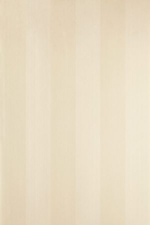 Plain Stripe ST 1101